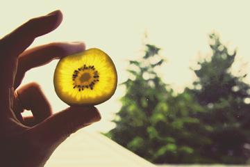 sunsumer.jpg