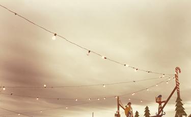 treelotlights.jpg