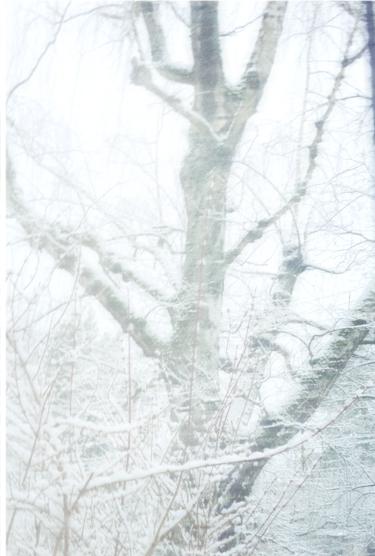 snowday11.jpg