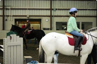 horsebday21.jpg