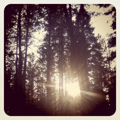 camping2011-2.jpg