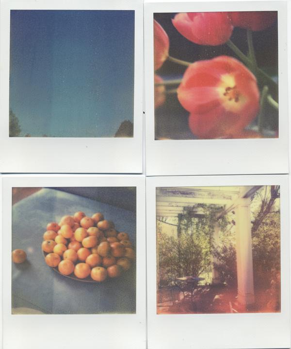 weekendpics412.jpg